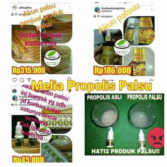Penjual Melia Propolis Plasu